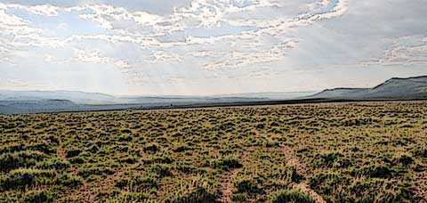 Prairie Sunlight